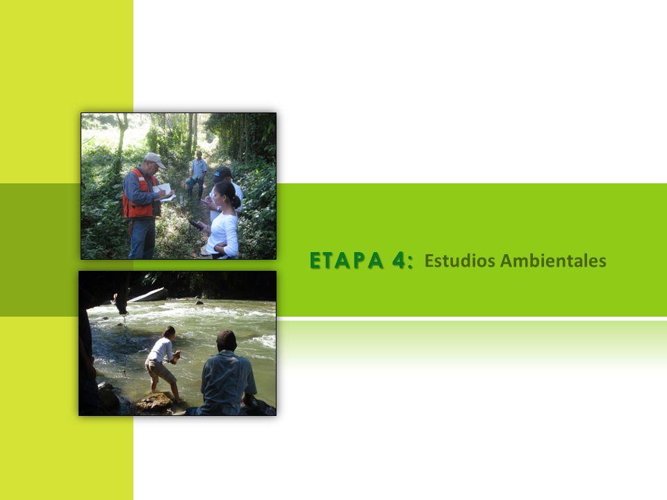 ETAPA 4: Estudios Ambientales