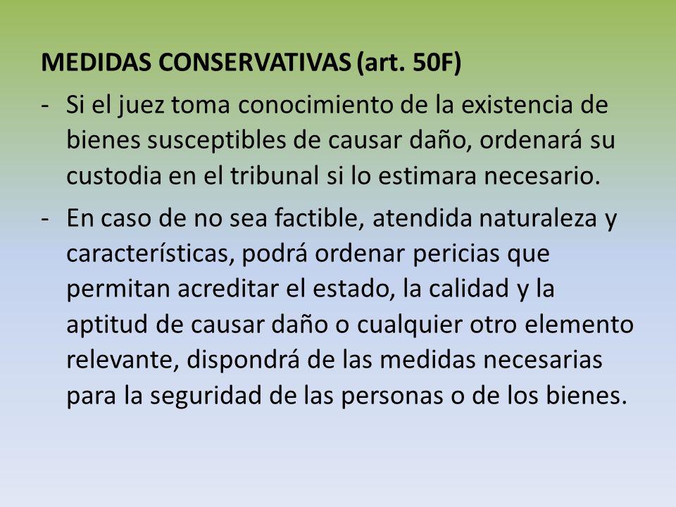 MEDIDAS CONSERVATIVAS (art. 50F)