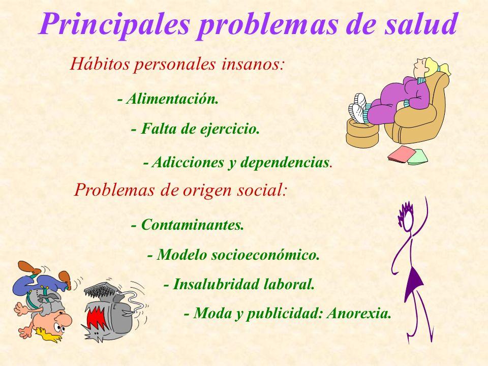 Principales problemas de salud