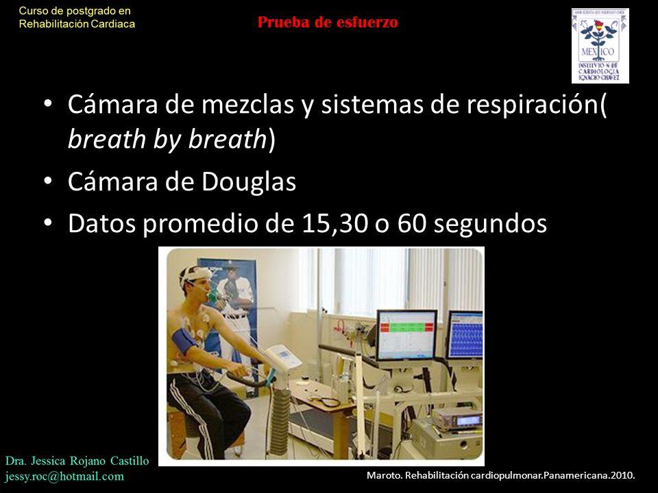 Cámara de mezclas y sistemas de respiración( breath by breath)