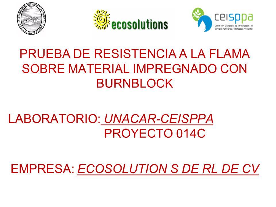 EMPRESA: ECOSOLUTION S DE RL DE CV