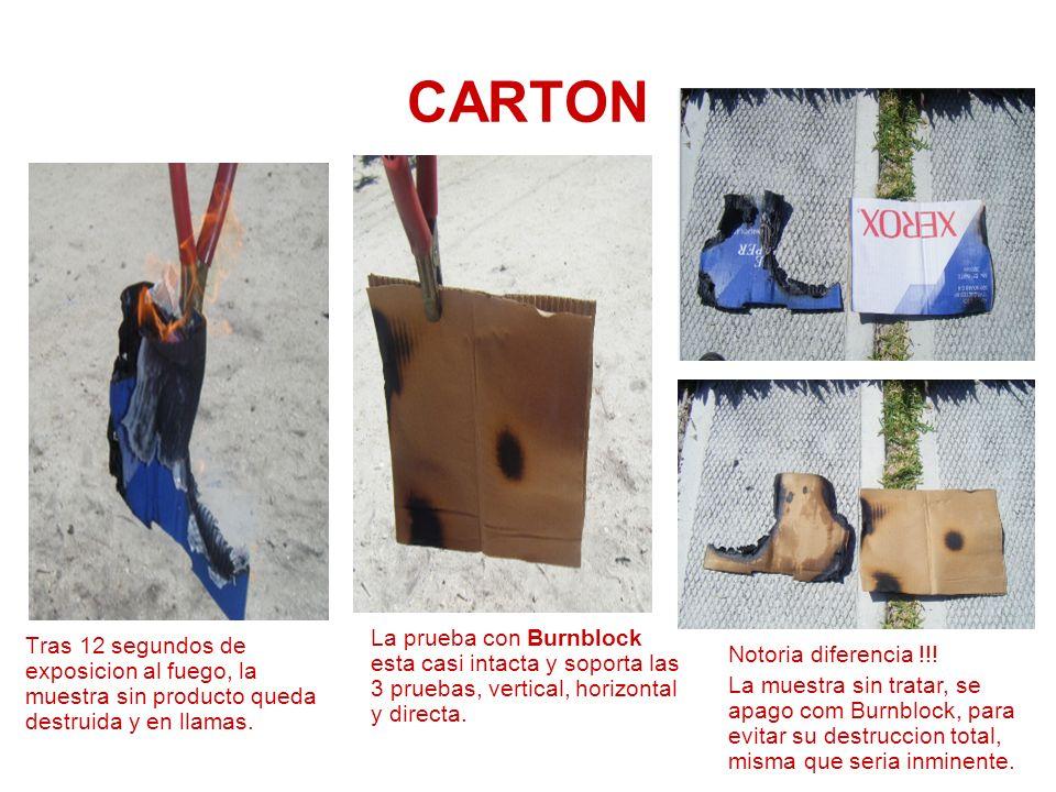 CARTON La prueba con Burnblock esta casi intacta y soporta las 3 pruebas, vertical, horizontal y directa.