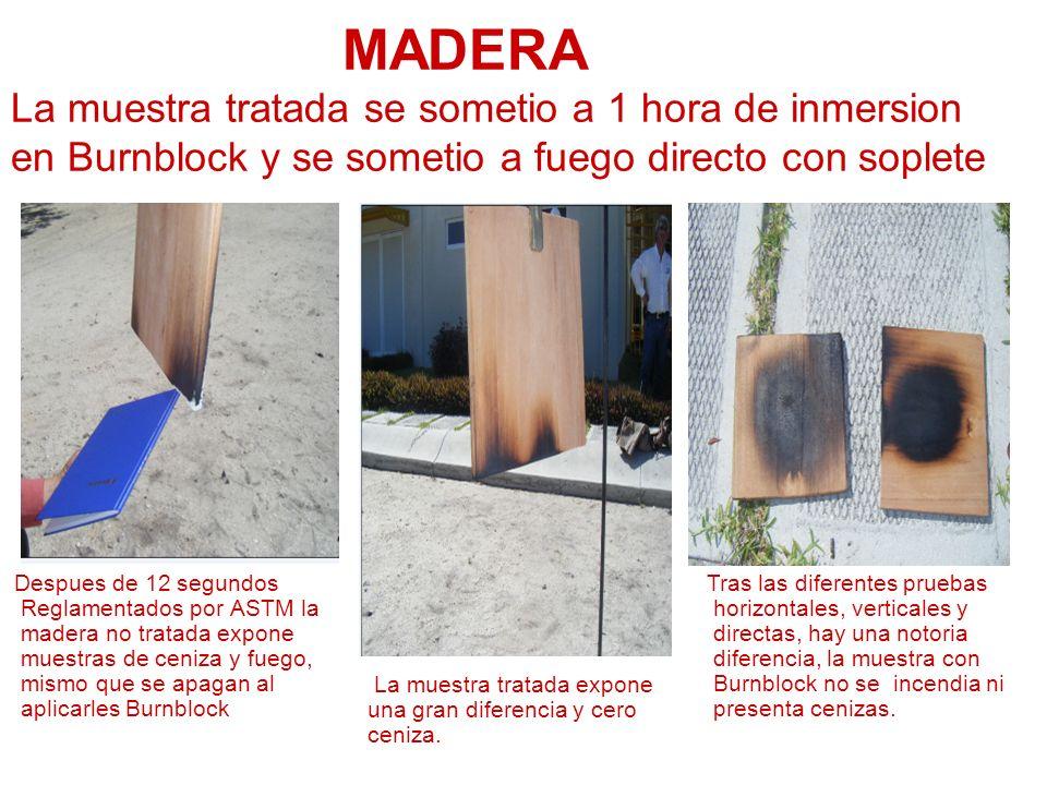 MADERA La muestra tratada se sometio a 1 hora de inmersion en Burnblock y se sometio a fuego directo con soplete