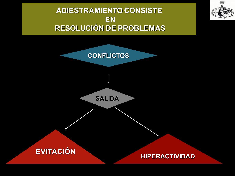ADIESTRAMIENTO CONSISTE RESOLUCIÓN DE PROBLEMAS