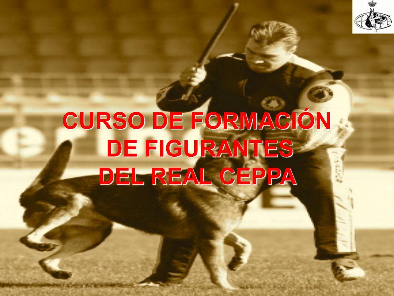 CURSO DE FORMACIÓN DE FIGURANTES DEL REAL CEPPA