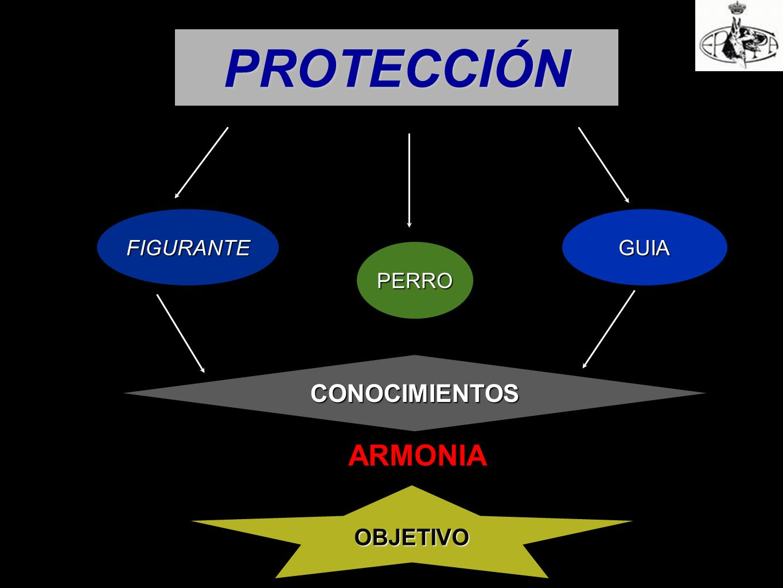 PROTECCIÓN FIGURANTE GUIA PERRO CONOCIMIENTOS ARMONIA OBJETIVO