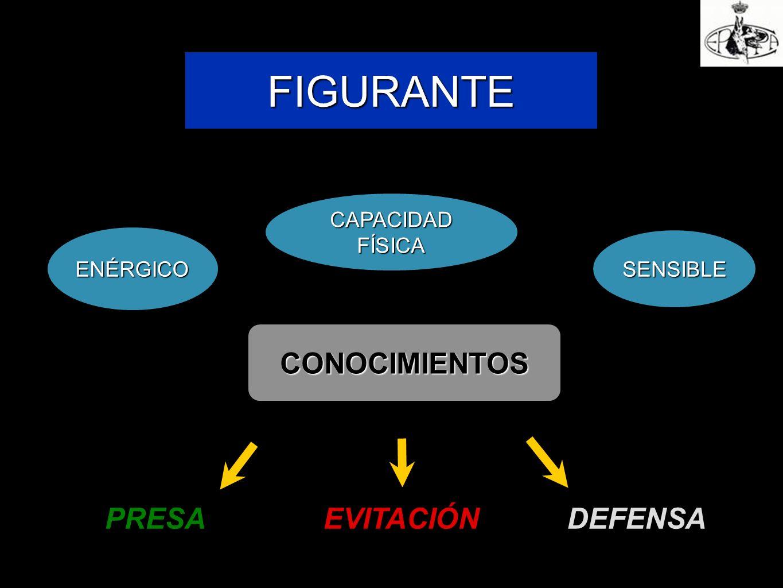 FIGURANTE CONOCIMIENTOS PRESA EVITACIÓN DEFENSA CAPACIDAD FÍSICA