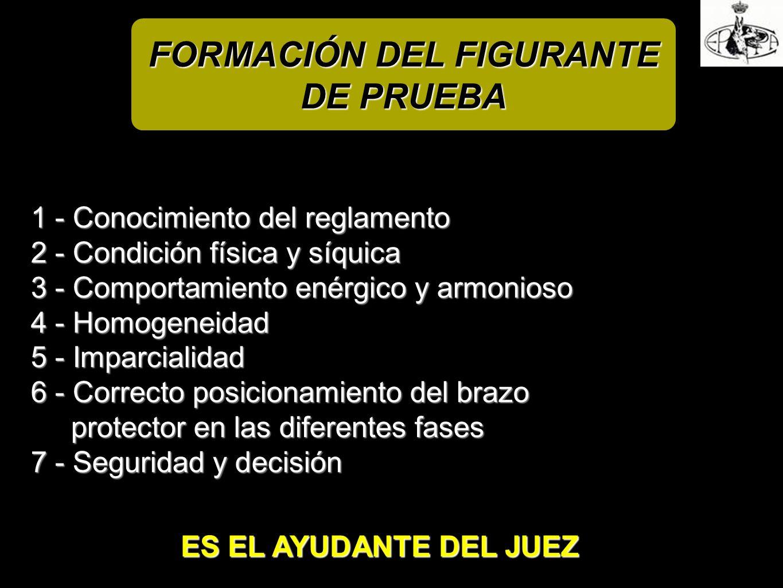 FORMACIÓN DEL FIGURANTE DE PRUEBA