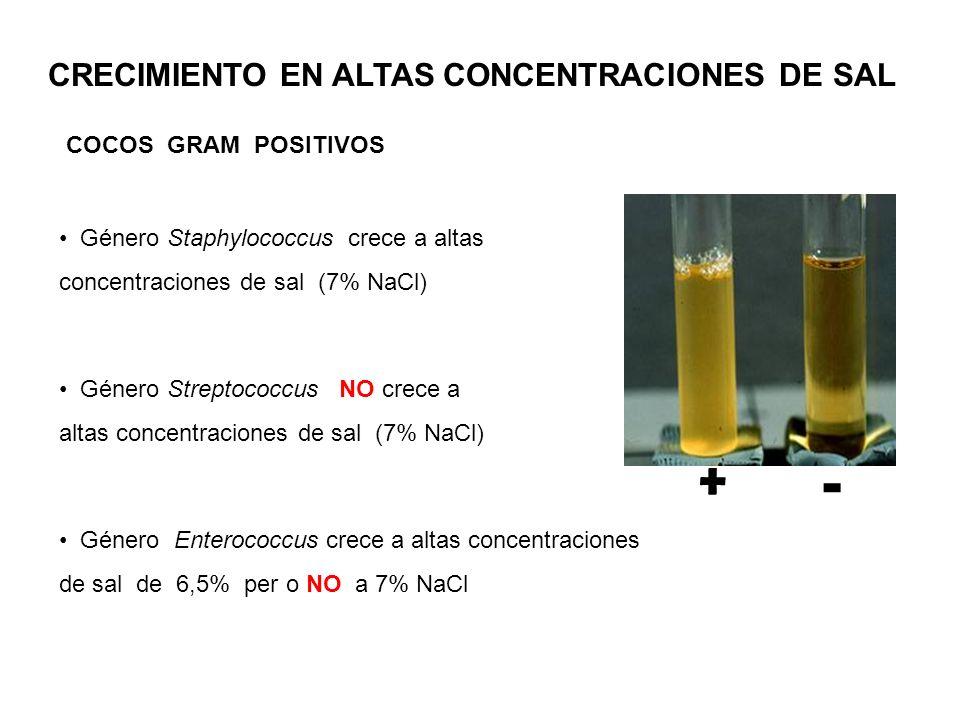 CRECIMIENTO EN ALTAS CONCENTRACIONES DE SAL