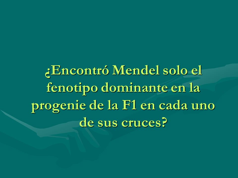 ¿Encontró Mendel solo el fenotipo dominante en la progenie de la F1 en cada uno de sus cruces