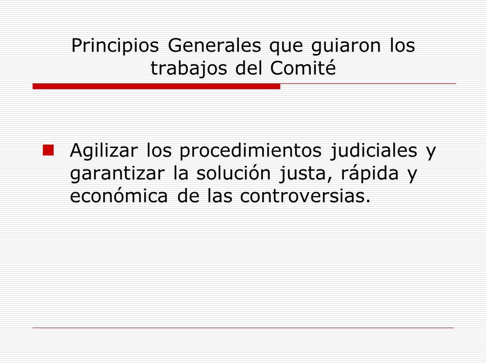 Principios Generales que guiaron los trabajos del Comité