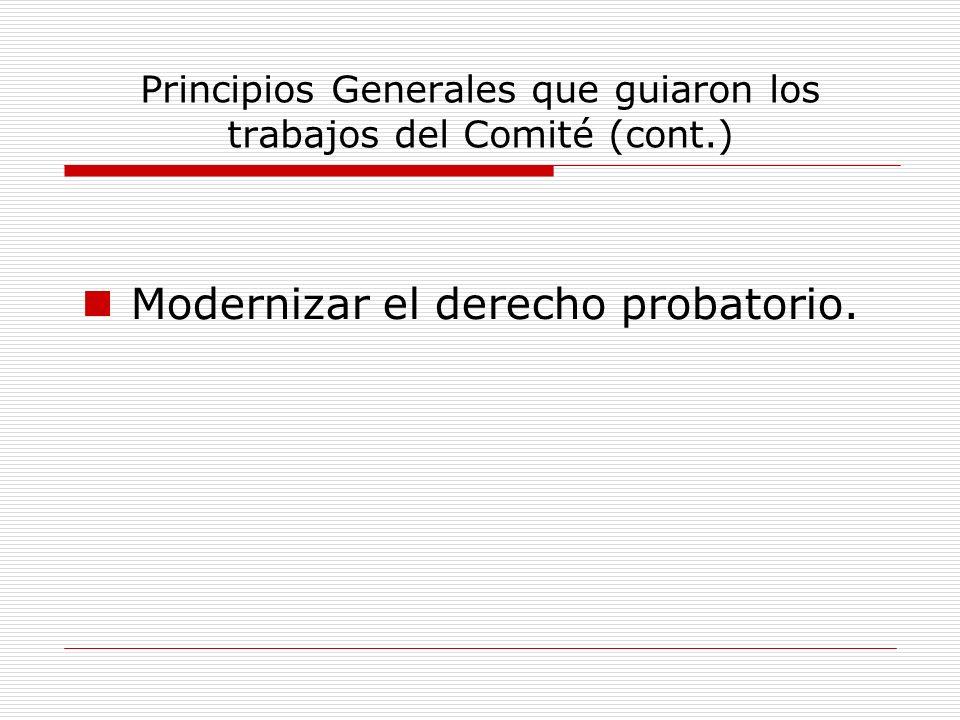 Principios Generales que guiaron los trabajos del Comité (cont.)