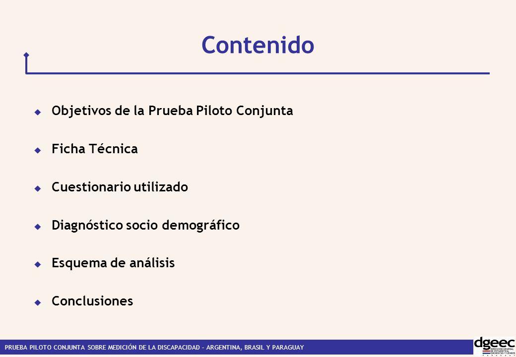 Contenido Objetivos de la Prueba Piloto Conjunta Ficha Técnica