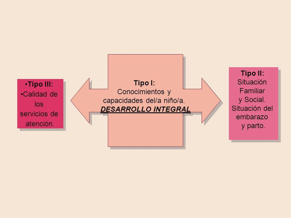 Tipo I: Conocimientos y capacidades del/a niño/a. DESARROLLO INTEGRAL