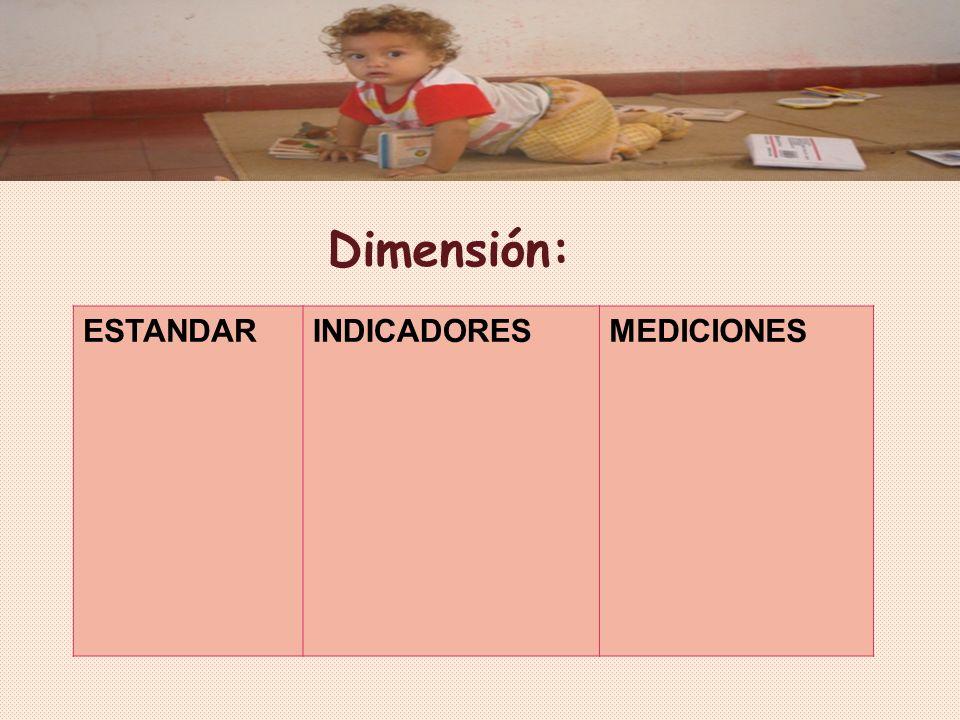 Dimensión: ESTANDAR INDICADORES MEDICIONES