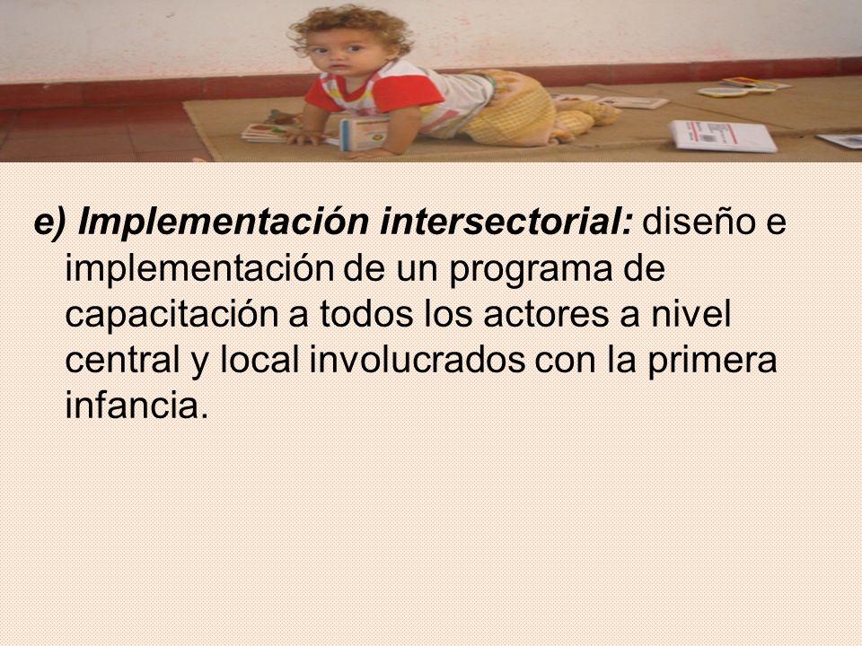 e) Implementación intersectorial: diseño e implementación de un programa de capacitación a todos los actores a nivel central y local involucrados con la primera infancia.