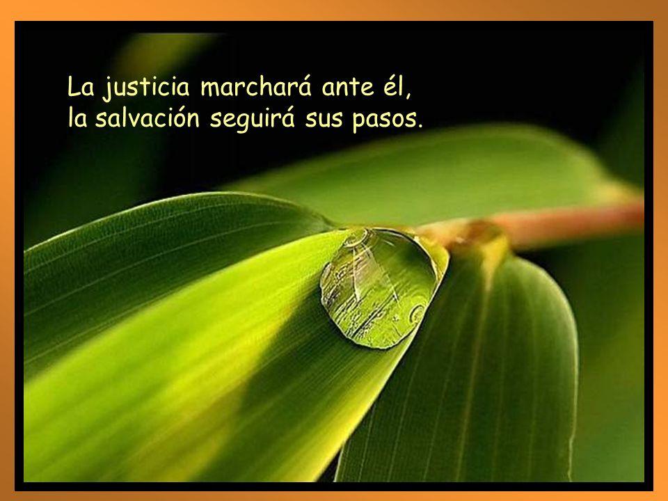 La justicia marchará ante él,