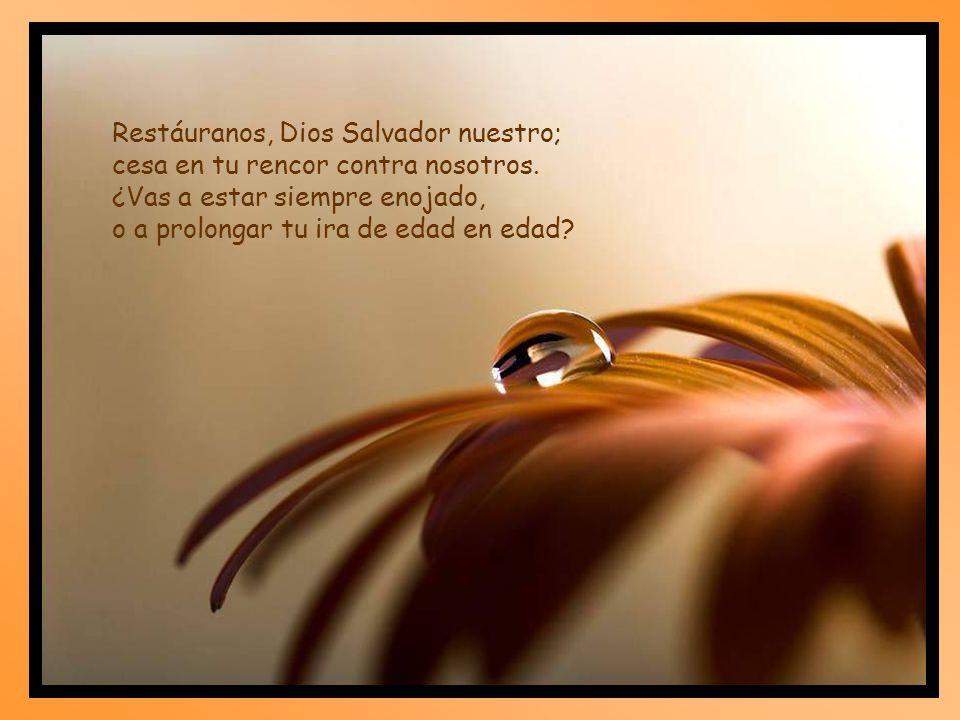 Restáuranos, Dios Salvador nuestro;
