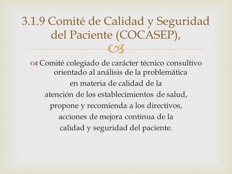 3.1.9 Comité de Calidad y Seguridad del Paciente (COCASEP),