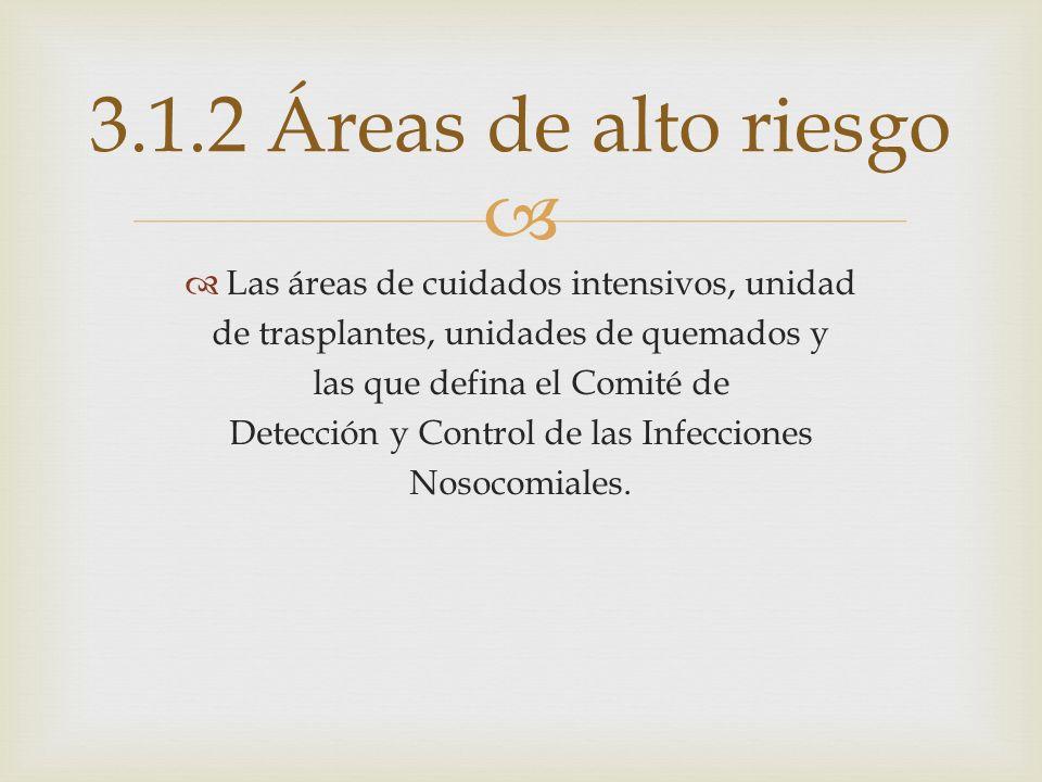 3.1.2 Áreas de alto riesgo Las áreas de cuidados intensivos, unidad