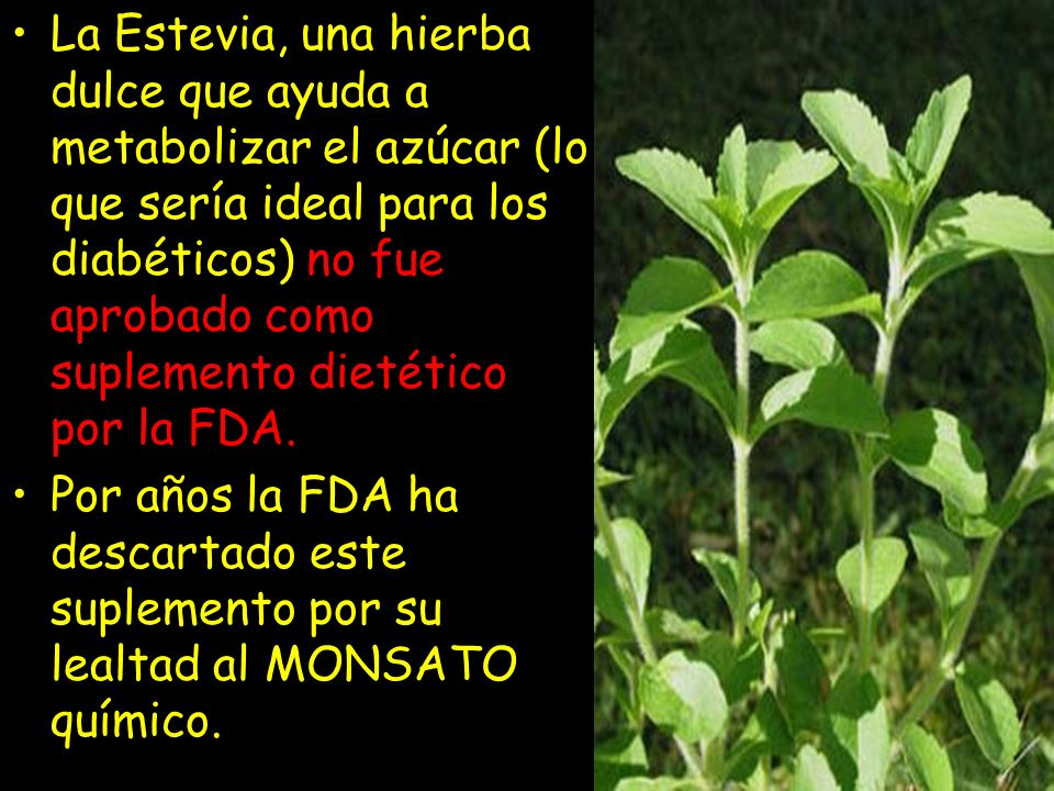 La Estevia, una hierba dulce que ayuda a metabolizar el azúcar (lo que sería ideal para los diabéticos) no fue aprobado como suplemento dietético por la FDA.