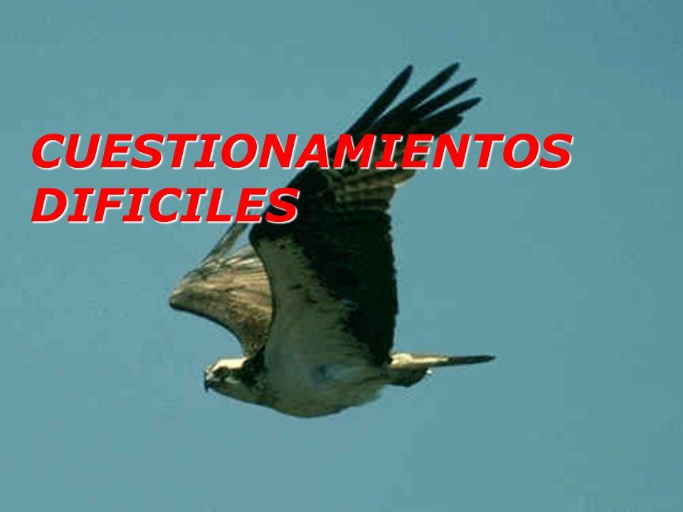 CUESTIONAMIENTOS DIFICILES