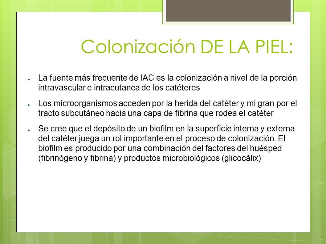 Colonización DE LA PIEL: