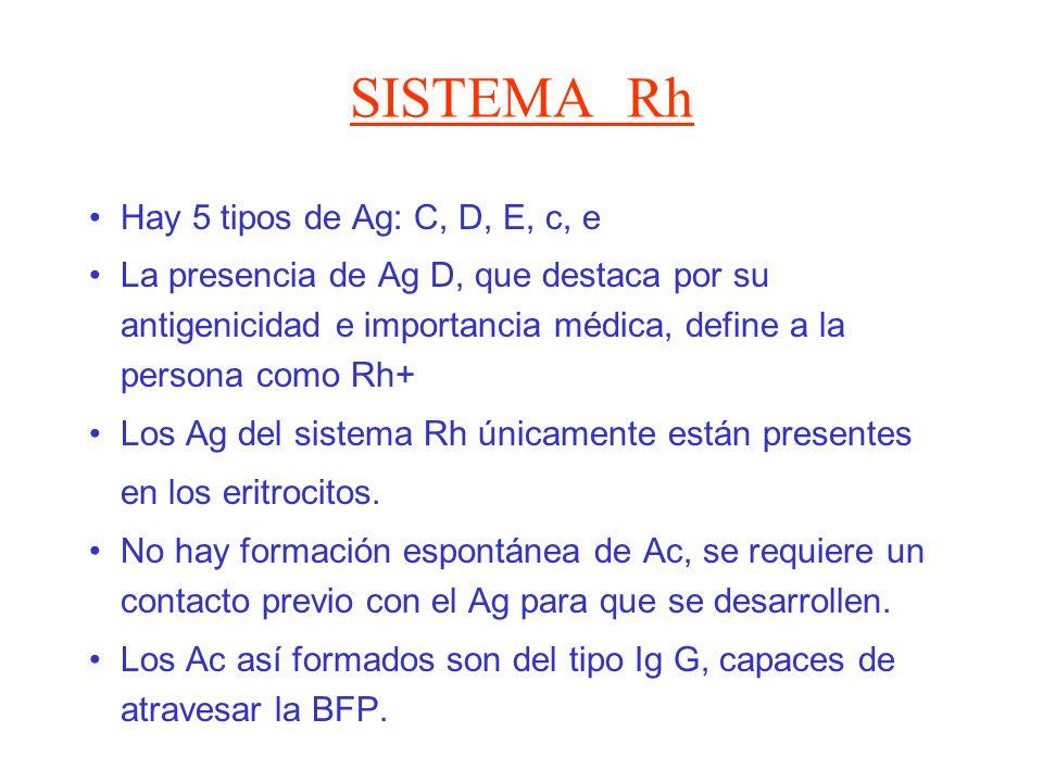 SISTEMA Rh Hay 5 tipos de Ag: C, D, E, c, e