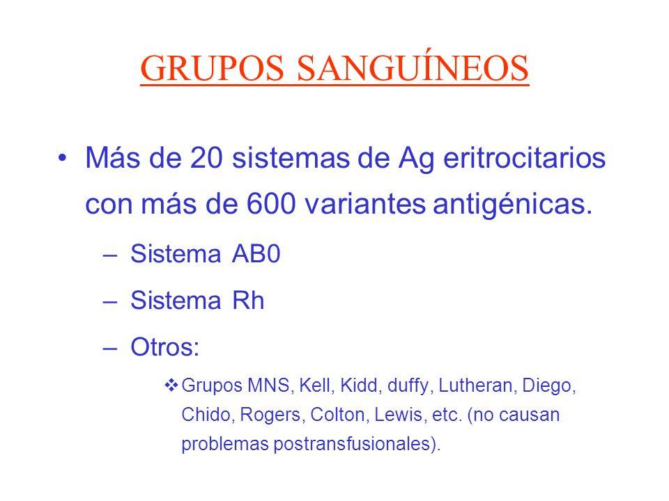 GRUPOS SANGUÍNEOS Más de 20 sistemas de Ag eritrocitarios con más de 600 variantes antigénicas. Sistema AB0.