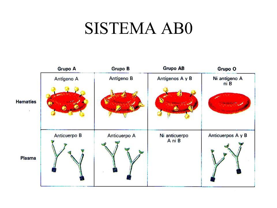 SISTEMA AB0