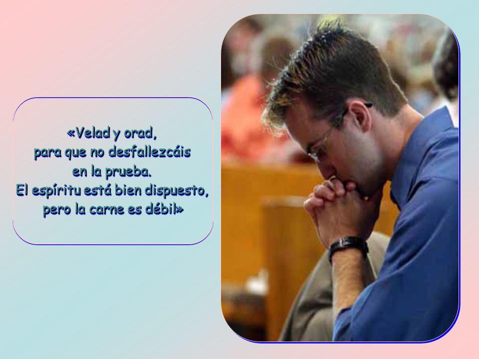 «Velad y orad, para que no desfallezcáis en la prueba