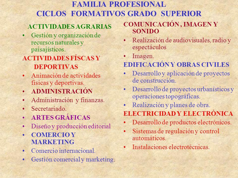 FAMILIA PROFESIONAL CICLOS FORMATIVOS GRADO SUPERIOR