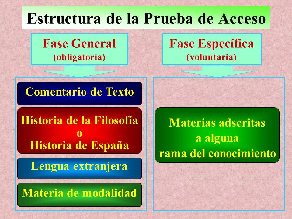 Estructura de la Prueba de Acceso