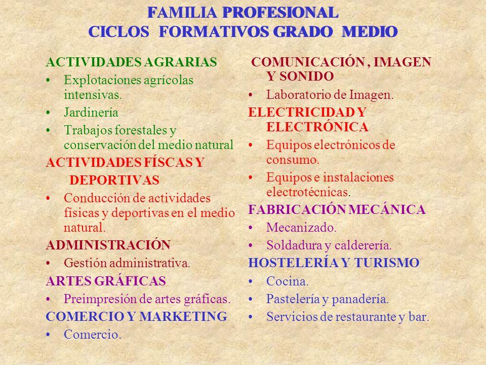 FAMILIA PROFESIONAL CICLOS FORMATIVOS GRADO MEDIO