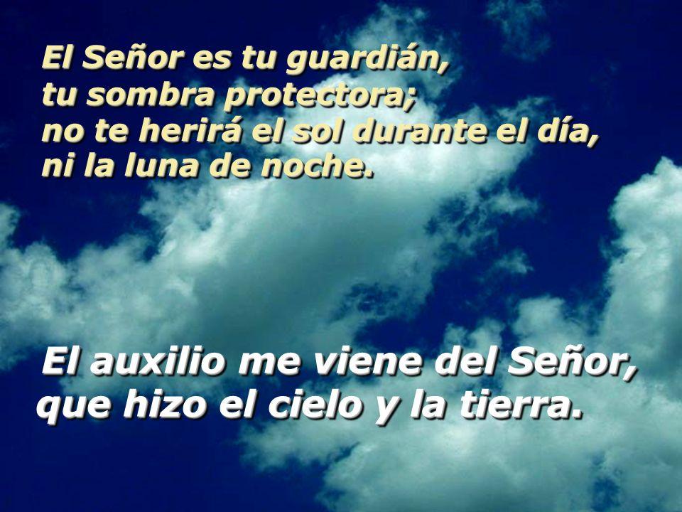 El Señor es tu guardián, tu sombra protectora; no te herirá el sol durante el día, ni la luna de noche.