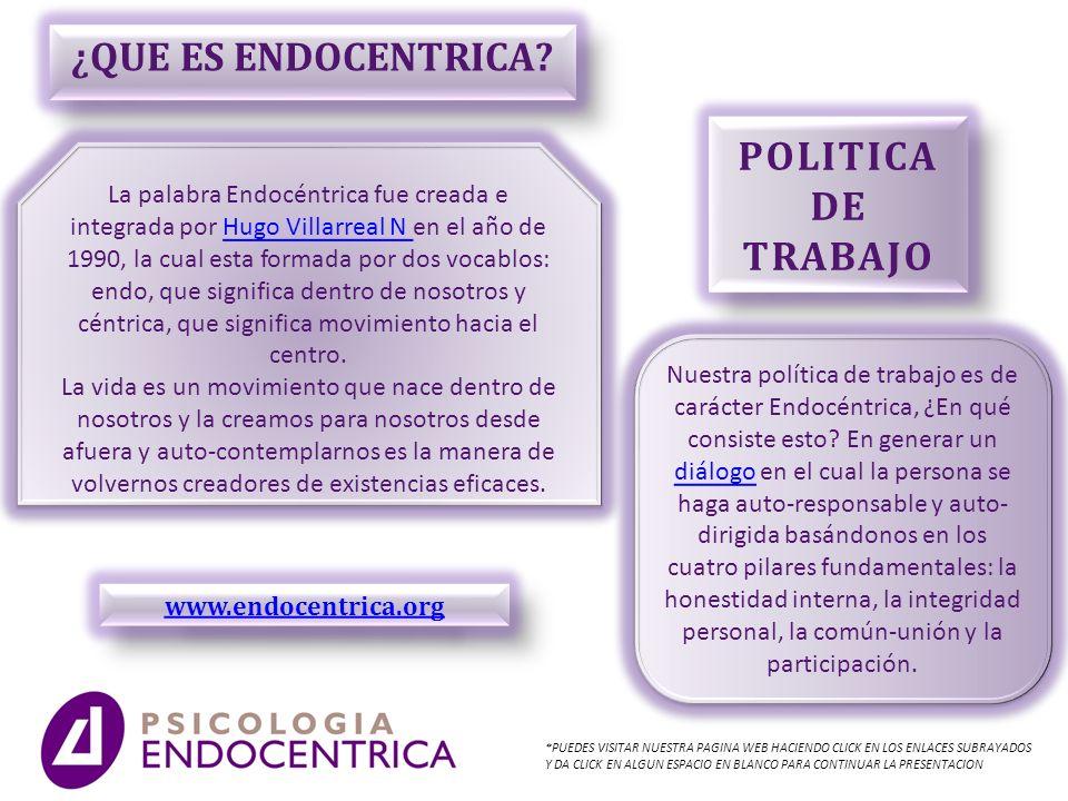 ¿QUE ES ENDOCENTRICA POLITICA DE TRABAJO