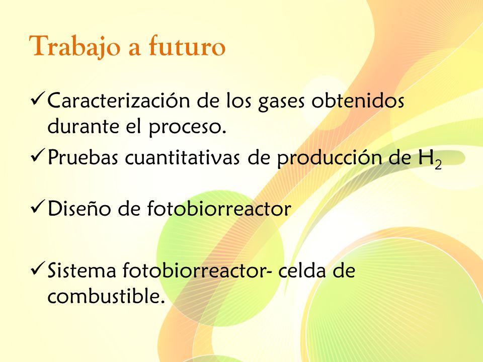 Trabajo a futuro Caracterización de los gases obtenidos durante el proceso. Pruebas cuantitativas de producción de H2.
