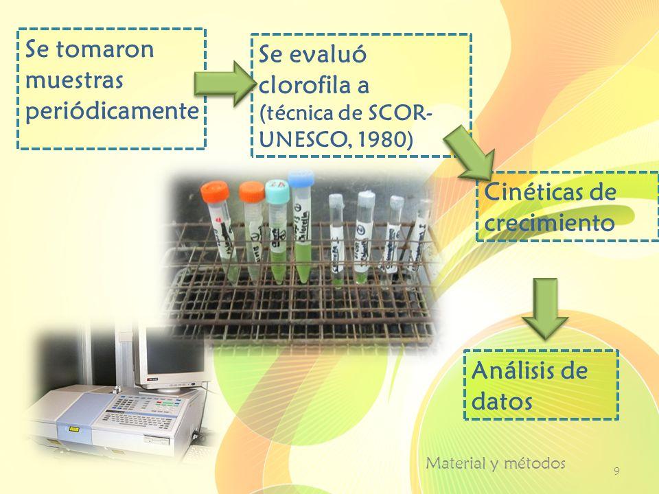 Se tomaron muestras periódicamente Se evaluó clorofila a