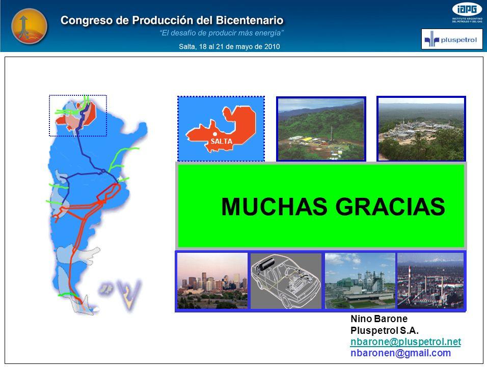 MUCHAS GRACIAS EL GAS NATURAL EN ARGENTINA