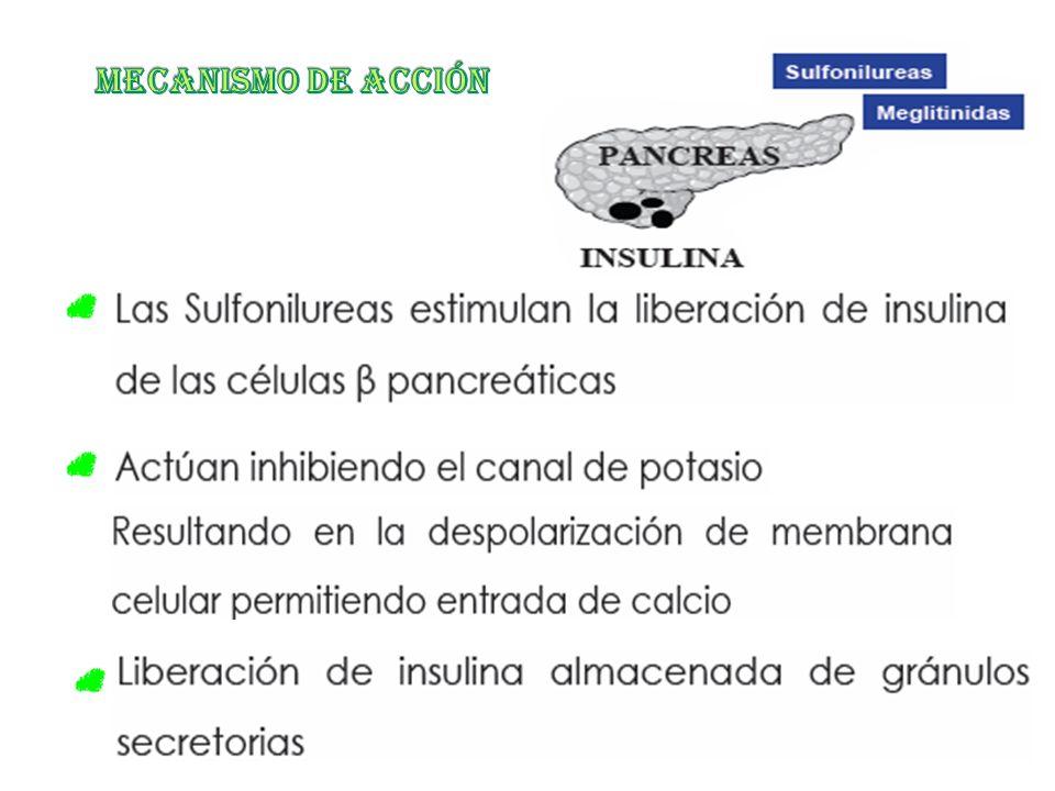 FARMACOS HIPOGLUCEMIANTES - ppt descargar