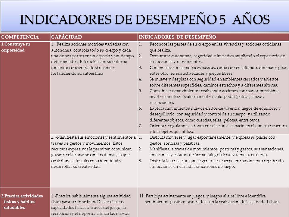 INDICADORES DE DESEMPEÑO 5 AÑOS
