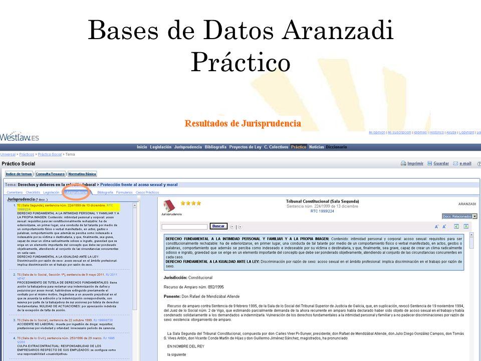 Bases de Datos Aranzadi Práctico