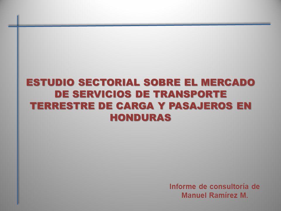 Informe de consultoría de Manuel Ramírez M.