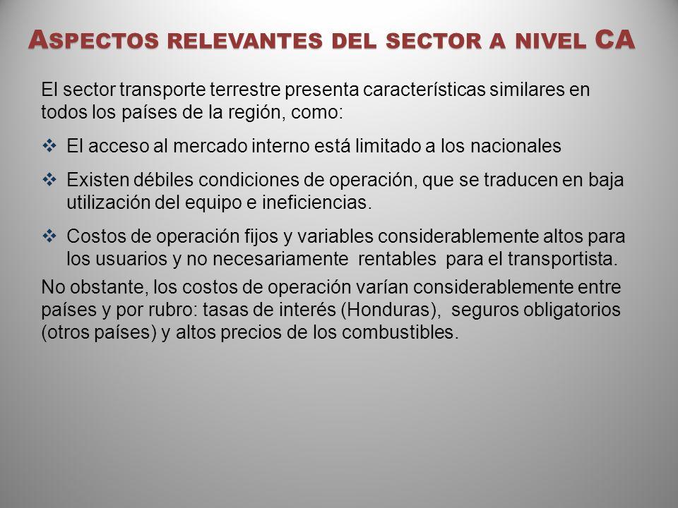 Aspectos relevantes del sector a nivel CA