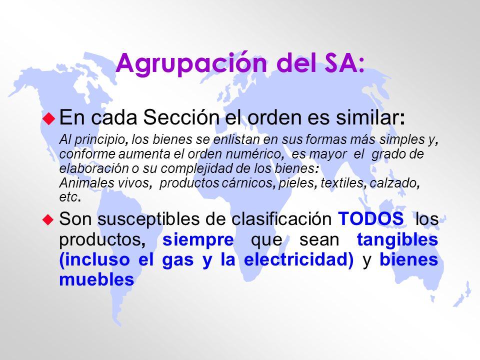 Agrupación del SA: En cada Sección el orden es similar: