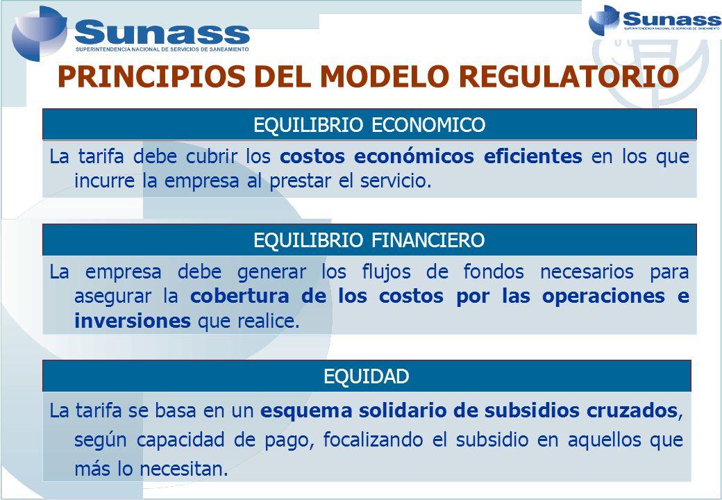 PRINCIPIOS DEL MODELO REGULATORIO