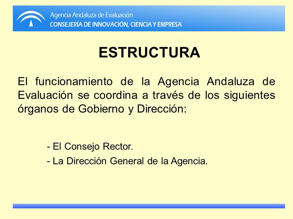 ESTRUCTURA - El Consejo Rector.