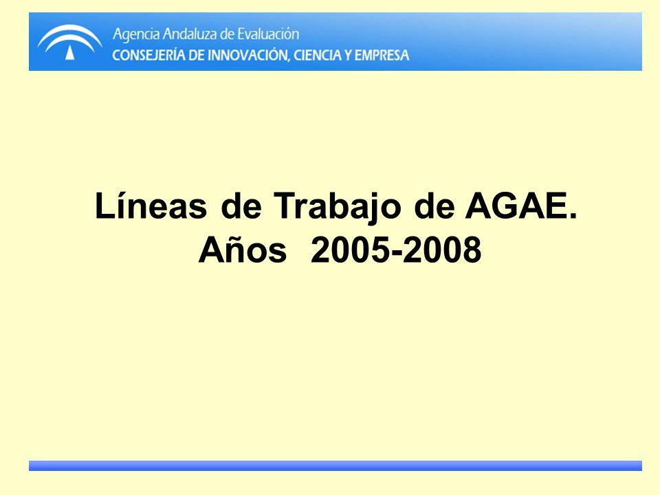 Líneas de Trabajo de AGAE. Años 2005-2008