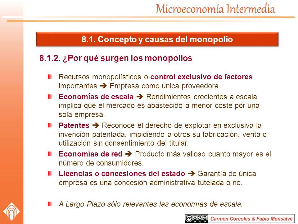 8.1. Concepto y causas del monopolio