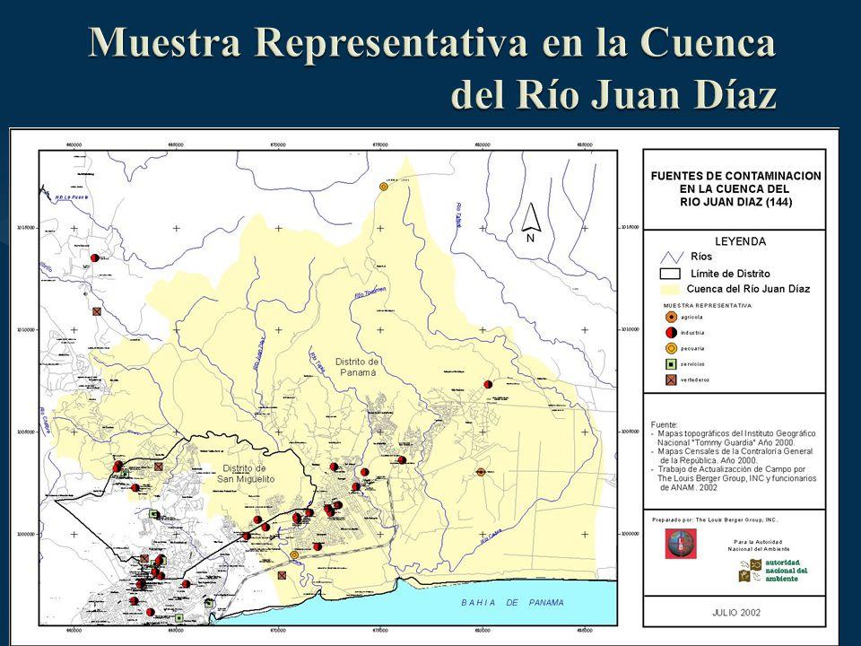Muestra Representativa en la Cuenca del Río Juan Díaz